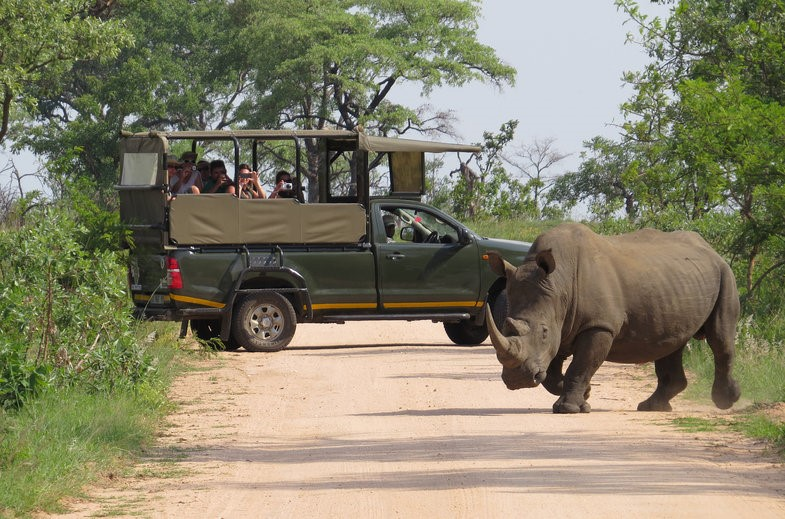 Slight increase in tourist arrivals to Kruger National Park and Mpumalanga over the Festive Season
