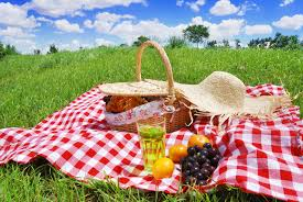 Send us information on Picnic Spots in the Lowveld