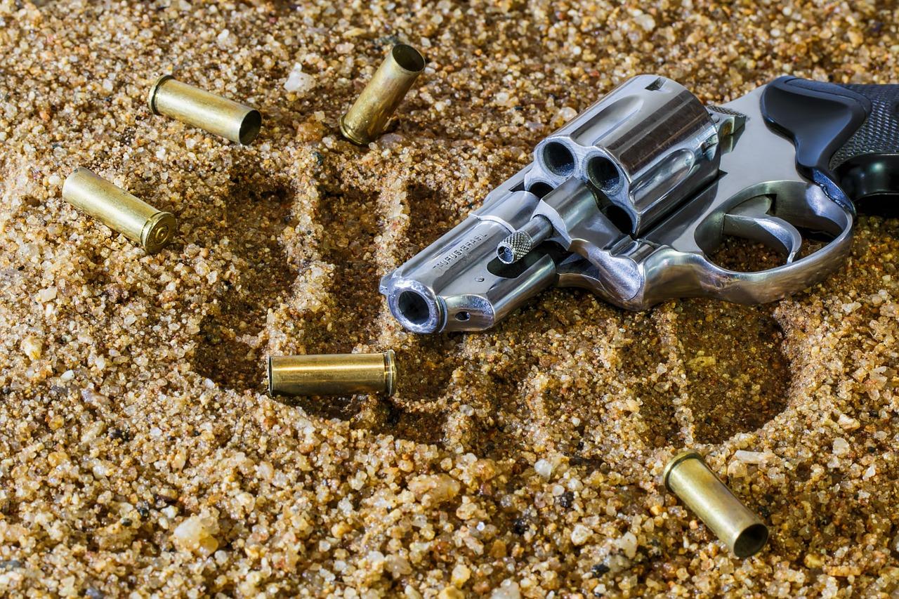Public Participation process on Firearm Control Amendment Bill postponed